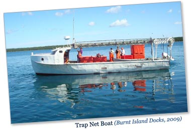 Photo: Trap Net Boat (Burnt Island docks, 2009)